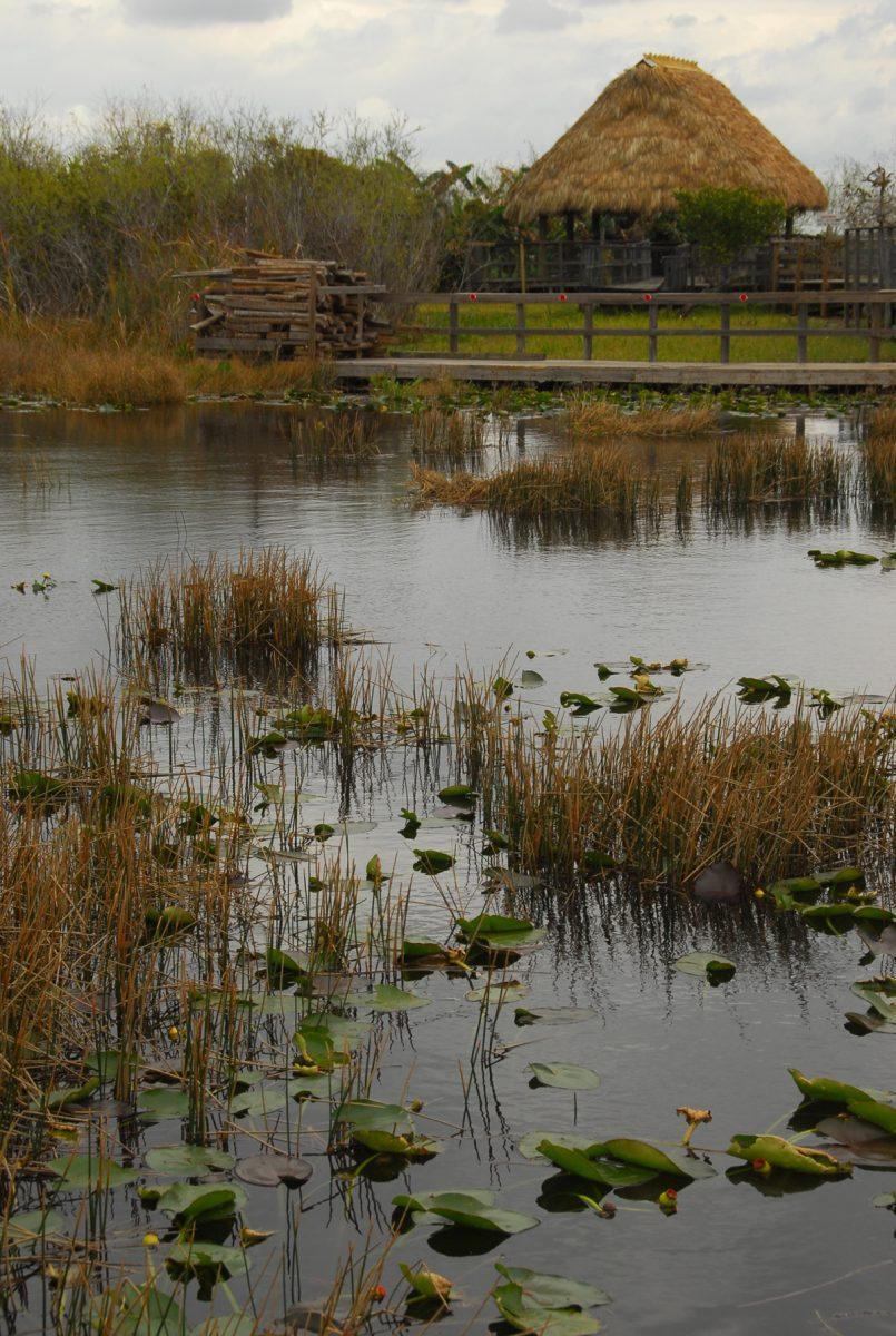 Reconstructed Native American village in the Florida Everglades